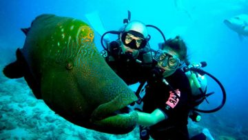 diving and